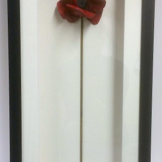 Box framed poppy